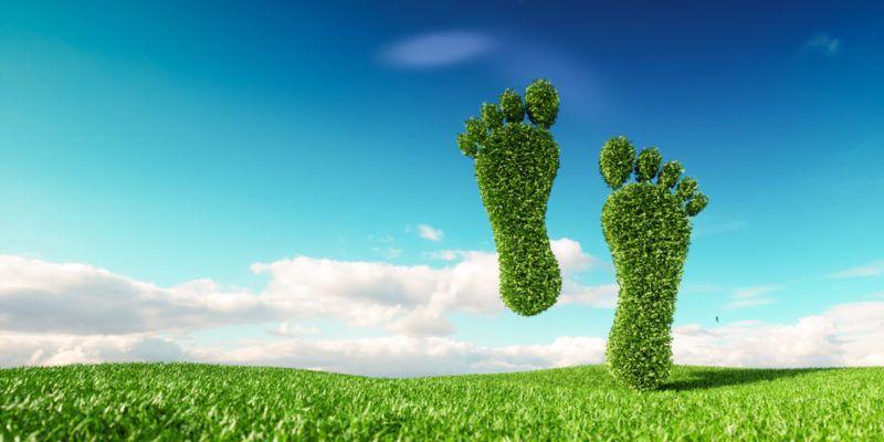 La huella ecológica y su relevancia